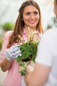 image of nurture  - Beautiful woman enjoy in nurturing flower - JPG