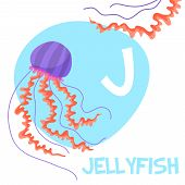 image of jellyfish  - Funny cartoon animals vector alphabet letter for kids from A to Z - JPG