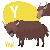 stock photo of yaks  - Funny cartoon animals vector alphabet letter for kids from A to Z - JPG