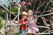 picture of brother sister  - Two little brother and sister near wooden fence - JPG