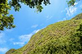 image of ant  - Ant view Khao Chang high mountain in sky is a tourist attractions Phung Chang cave and symbol of Phang Nga province Thailand - JPG