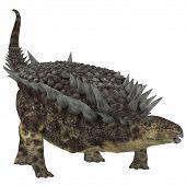 foto of herbivorous  - Hungarosaurus was an ankylosaur herbivorous dinosaur that lived in Hungary during the Cretaceous Period - JPG