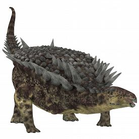 pic of herbivore  - Hungarosaurus was an ankylosaur herbivorous dinosaur that lived in Hungary during the Cretaceous Period - JPG