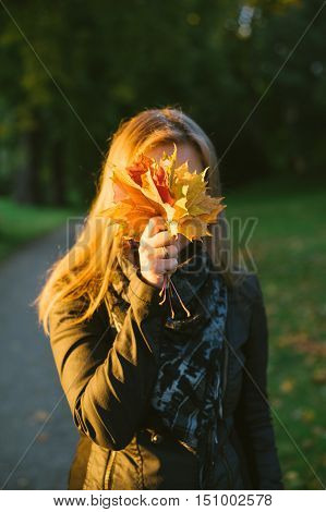 Young woman hiding face behind bunch of autumn fallen leaves