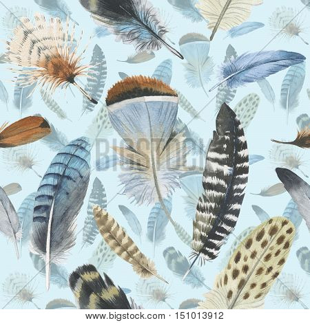 Watercolor bird feather pattern from wing isolated. Aquarelle wild flower could be used for background, texture, wrapper pattern, frame or border.