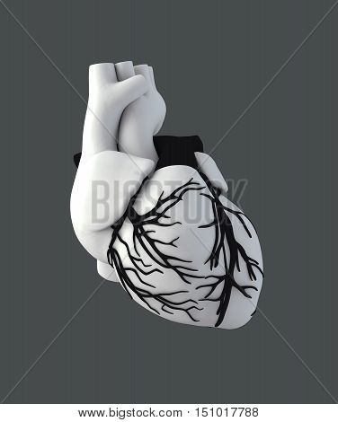 3d Illustration of Anatomy Human Heart - Isolated on gray