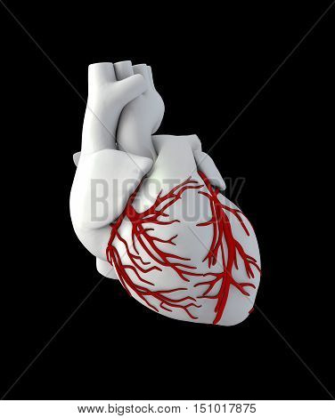 3d Illustration of Anatomy Human Heart - Isolated on black