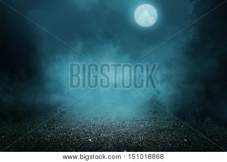 Image of spooky foggy forest in the moonlight