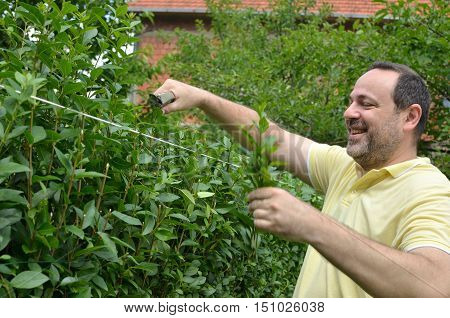 Cutting The Top Of Hedge
