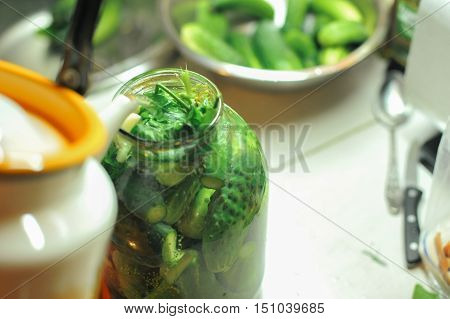 People Are Preparing In The Kitchen. Pickling Cucumbers, Preparation For Winter Salting.