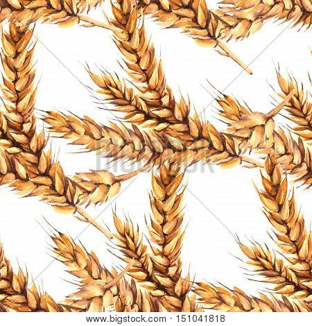 Background with three stalks of malt. Seamless pattern. Watercolor illustration.