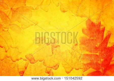 Grunge fall background with old paper texture and autumn leaves