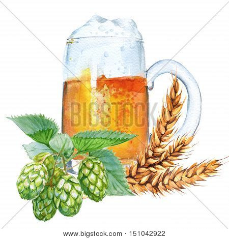 Mug with beer hops and malt. Isolated on a white background. Watercolor illustration.