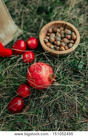 on the green grass red apple with a pomegranate and a wooden plate with nuts and biscuits