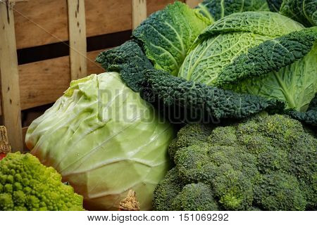 Green fresh vegetables - whole Savoy cabbage broccoli other cabbages up on wooden background