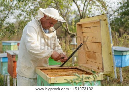 beekeeper collects propolis. Apiarist is working in his apiary