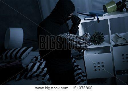 Masked Burglar In Action