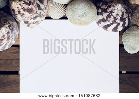 Empty white note paper and shells on wood, Holiday concept