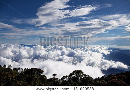 High trees above the clouds with white nice cloud, blue sky and village below background, mountains view, mountains nature view, mountains flora, mountains landscape, night in Kota Kinabalu, Borneo