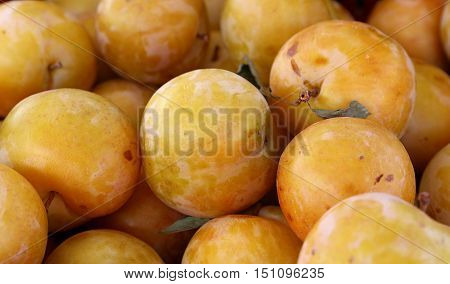 Fresh Yellow Plums On Retail Market Display