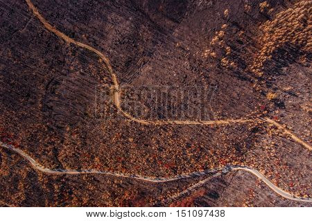 Scorched ground Monchique forests. View from the sky. Abstract.