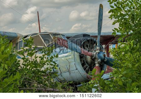 Abandoned old plane ruins in a forest- cockpit view