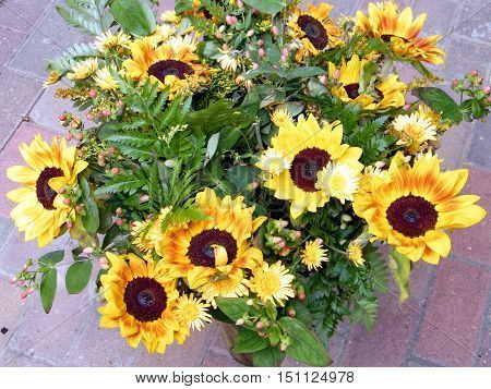 The bouquet of sunflowers in Or Yehuda Israel