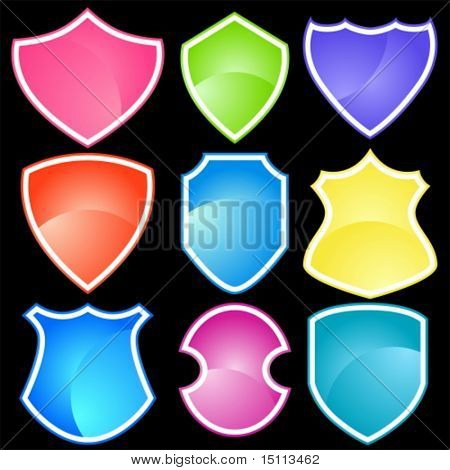 Neon Shield Set