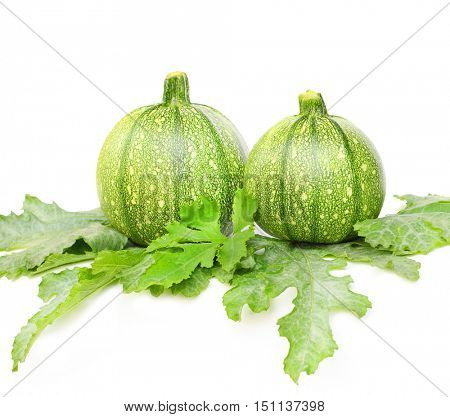 Eight ball Squash or Zucchini or Round Courgette (Cucurbita pepo). Vegetable on white background.
