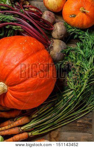 Orange pumpkin and harvest vegetables