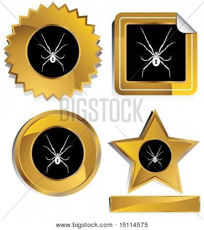 black widow spider gold frame