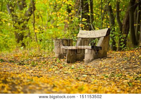 Old wooden bench among fallen leaves in the forrest