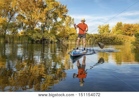 Senior male paddler enjoys workout on his racing stand up paddleboard in fall colors on lake in Colorado