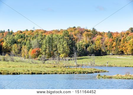 Algonquin Park on a sunny, fall day