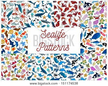 Sea life animals and fishes seamless patterns. Vector cartoon pattern of happy cute seahorse, dolphin, whale, jellyfish, shrimp, octopus, penguin, squid, stingray, clownfish, turtle, crab shark seal mollusk shell