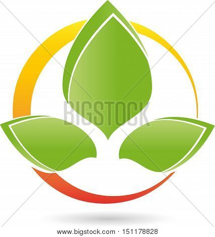 Three leaves and circle, flower, naturopath or nature logo