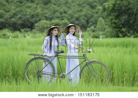 Portrait of VIetnam girl with Ao Dai at cornfield Vietnam traditional dressAo dai is famous traditional costume for woman in VIetnam.
