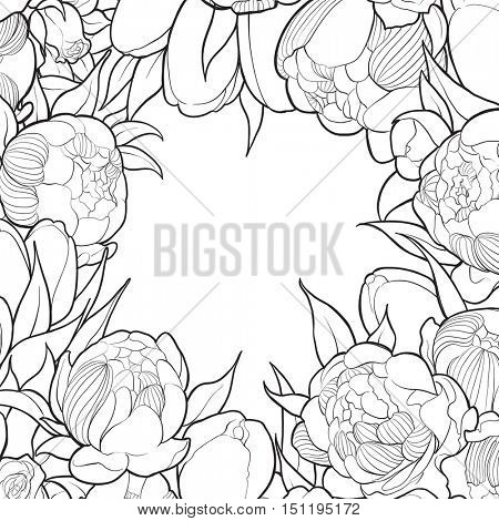 Frame of black and white peonies and roses