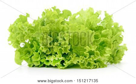 Fresh green lettuce isolated on a white.