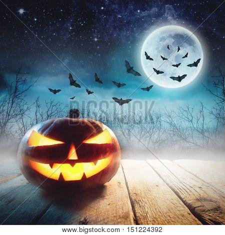 Halloween Pumpkin in a dark mist Forest. Studio shot. Elements of this image furnished by NASA