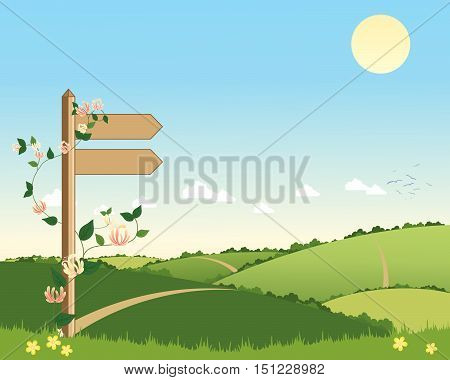 an illustration of a countryside scene with a wooden signpost pointing to a footpath going over the hills under a blue sky in summer