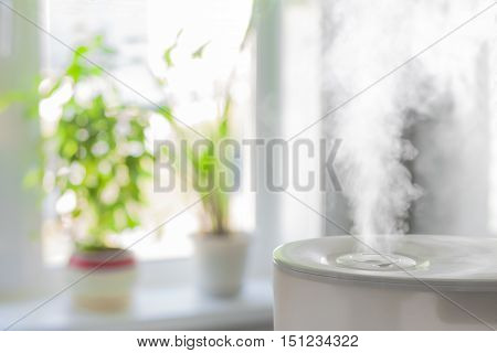 Vapor from humidifier in front of window