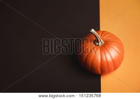 Pumpkin on two-colored background. Helloween vegetable on interesting backdrop with place for text.