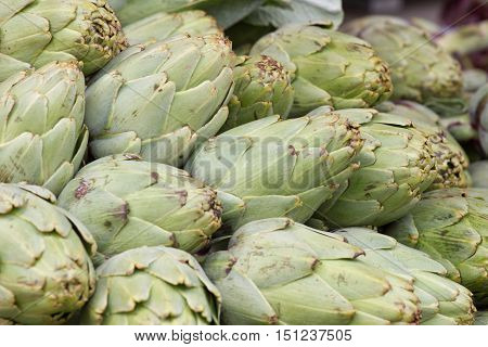 Artichoke background. Asparagus family, market stock photography. Local product