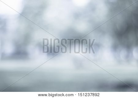 grey blur background / Blurred nature abstract background