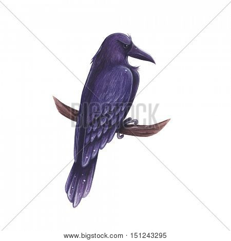 Raven hand-drawn cartoon illustration