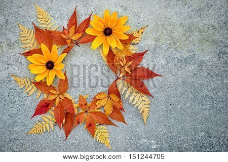 Wreath Of Red Autumn Grape Leaves, Yellow Fern Leaves And Rudbeckia Flowers On A Neutral Grey Backgr