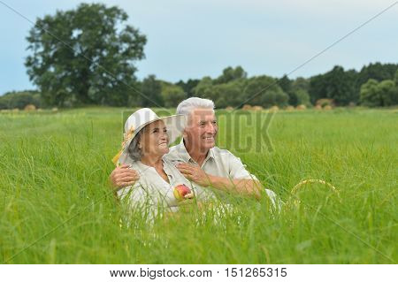 Beautiful senior couple in a summer field