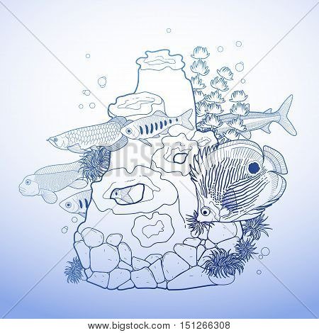Graphic aquarium fish with coral reef drawn in line art style. Isolated underwater scenery in blue colors.
