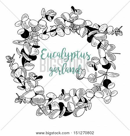 Vector hand drawn garland of eucalyptus branches. Vintage engraved style art. Botanical illustration. Good for wedding invitation store market party blogs social media design and other art.